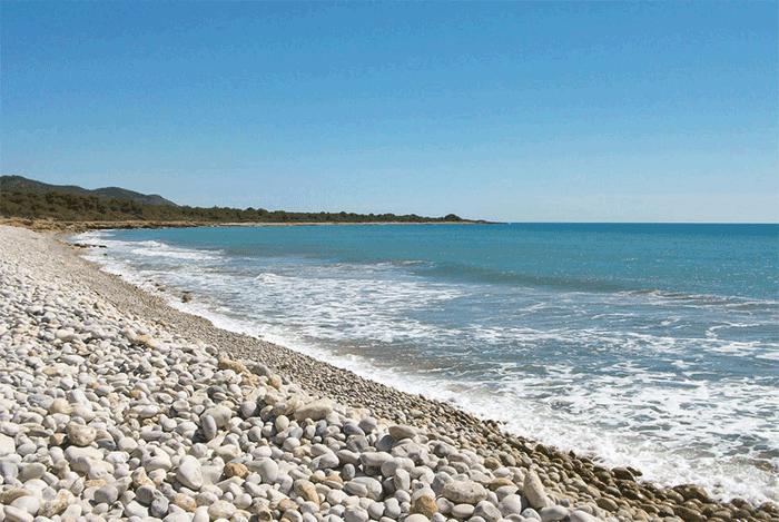 playa-basseta